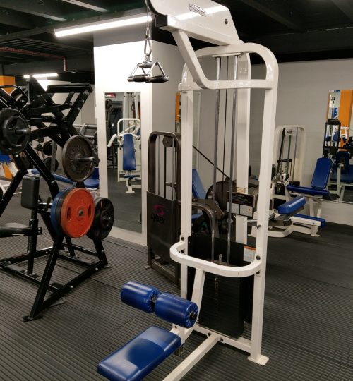 Olympian Gym Lat Pull Down 2