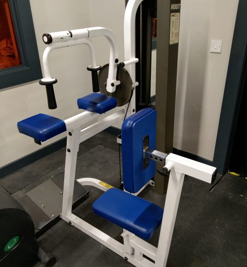 Olympian Gym Seated Tricep Extension